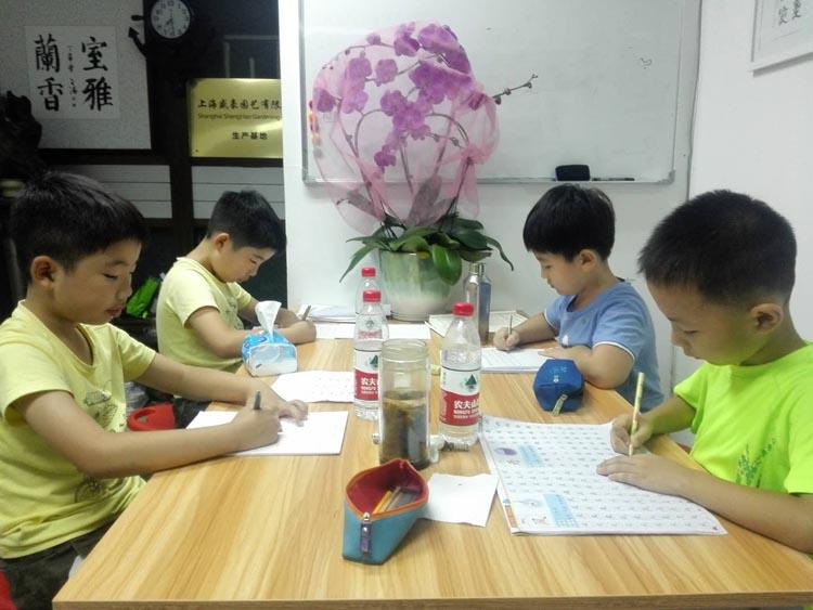 上海书法学习班平塘人家书法学习小组