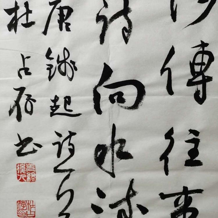 中国书法家协会会员、国展状元、开滦画院副院长【杜占存 精品书法】